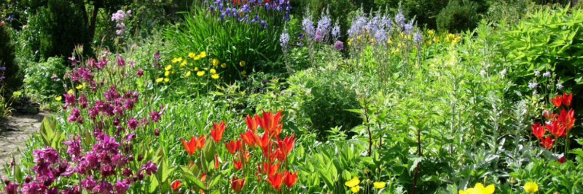 east_lambrook_manor_garden_original
